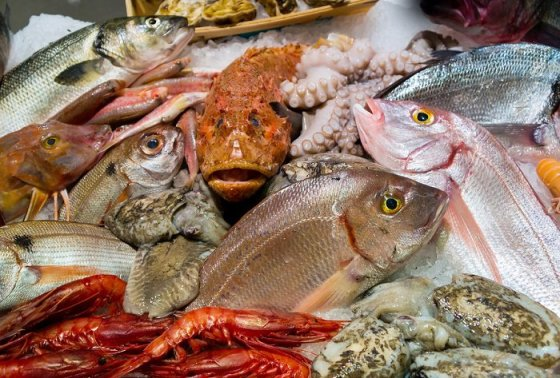 Fresh seafood in fish market or restaurant