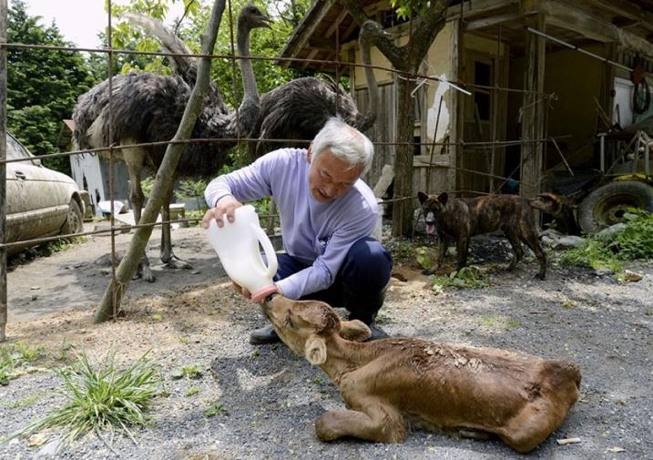 53805-1000-1450618948-fukushima-radioactive-disaster-abandoned-animal-guardian-naoto-matsumura-13