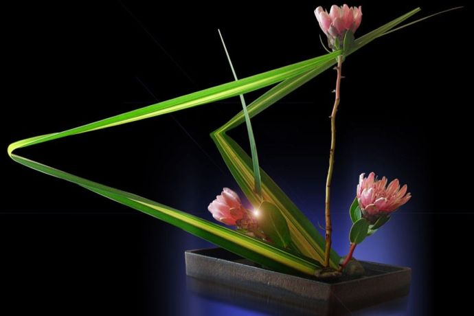 terrapapers.com-ikebana-8